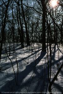 015-winter_woods-saylorville-13jan85-f3-1268