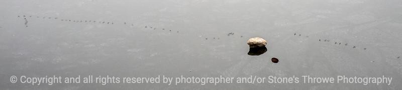 015-reflections-wdsm-13dec14-18x04-009-1090