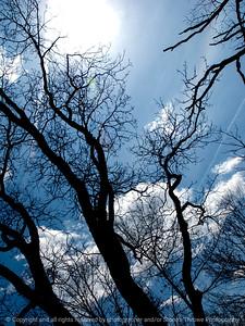 015-sky_tree-wdsm-21apr13-0539