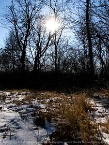 015-winterscape-wdsm-13jan12-001-3089