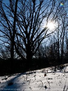 015-winterscape-wdsm-13jan12-001-3094