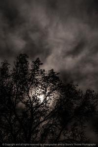 015-clouds-wdsm-03nov13-5687