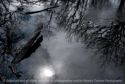 015-reflections-wdsm-29feb16-18x12-003-6572