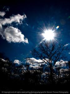015-tree_sky-wdsm-22feb12-001-3471