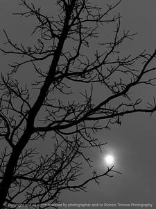 015-sun_gray_day-wdsm-08dec12-bw-9101