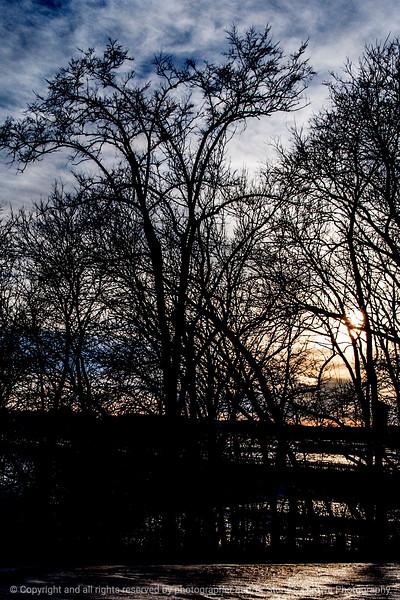 015-sunset_trees-wdsm-22feb14-004-6797