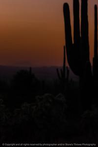 015-sunset-arizona-03dec06-08x12-008-500-0089