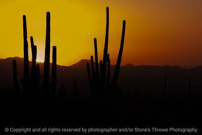 015-sunset-arizona-03dec06-12x08-008-500-0067