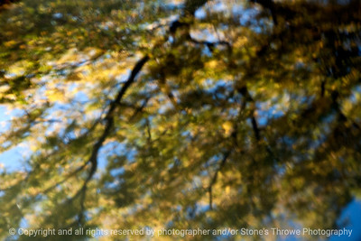 015-reflection-wdsm-13oct13-5276