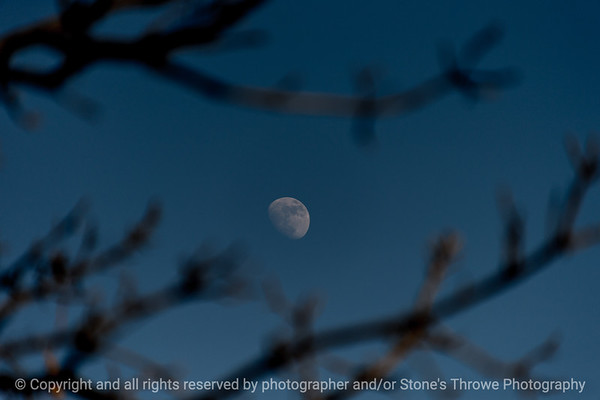 015-moon-wdsm-27jan18-12x08-007-3582