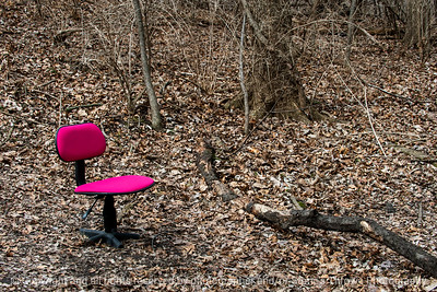 015-office_chair_woods-wdsm-29mar19-12x08-008-500-9676