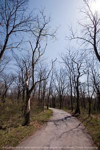 015-trees-wdsm-09apr10-0862