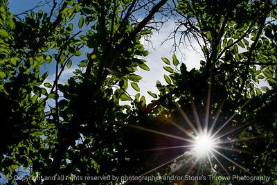 015-sunburst-wdsm-07jun17-18x12-203-3212