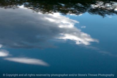 015-reflections-wdsm-01nov13-1106