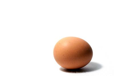 015-egg_brown-wdsm-27feb13-0479