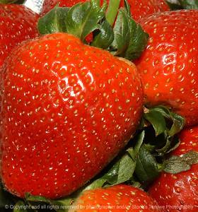 015-strawberry-wdsm-14jun03-c1-zzzq