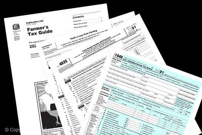 015-tax_forms-studio-10jul21-12x08-008-400-3584