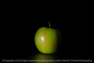 015-apple-studio-11feb19-09x06-019-500-3920