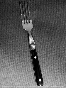015-fork-wdsm-07dec14-09x12-001bw-0970