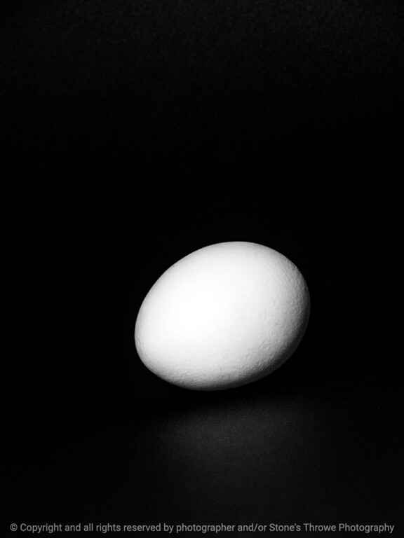 015-egg-wdsm-18apr14-001-bw-7073