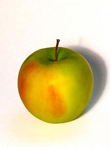 015-apple-wdsm-28apr14-201-1288