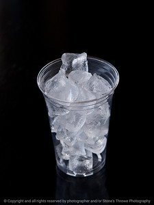 015-cup_of_ice-wdsm-06apr09-3904