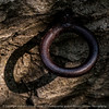 015-ring_shadow-wdsm-03sep14-006-9322