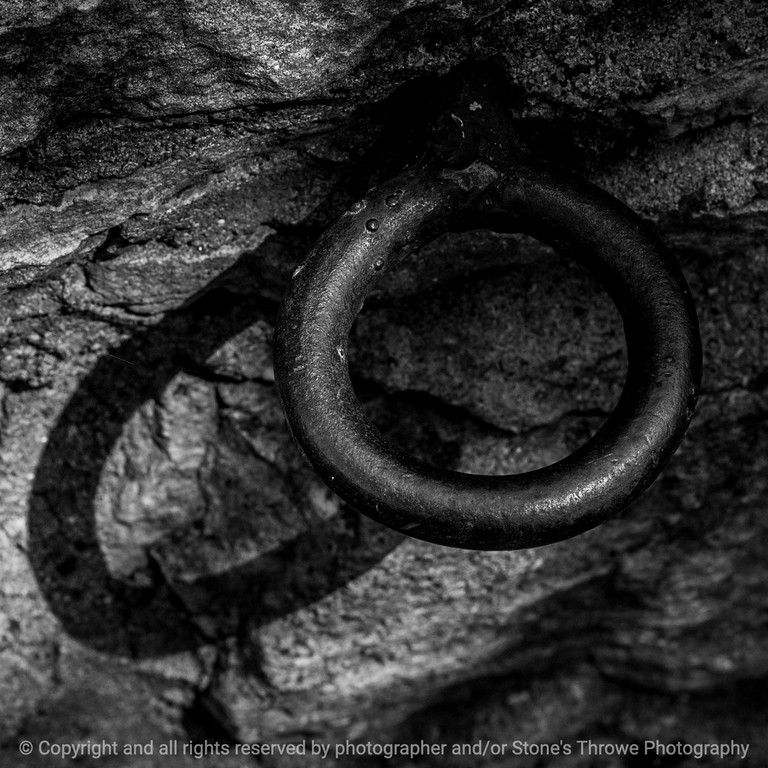 015-ring_shadow-wdsm-03sep14-006-bw-9322