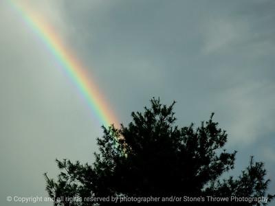 023-rainbow-warren_co-12may09-1216