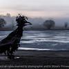 015-sculpture_fog-wdsm-24dec16-18x12-203-7299