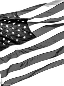 015-flag_us-wdsm-19apr14-201-bw-1257