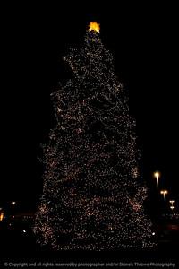 015-tree_christmas-wdsm-25dec11-2762