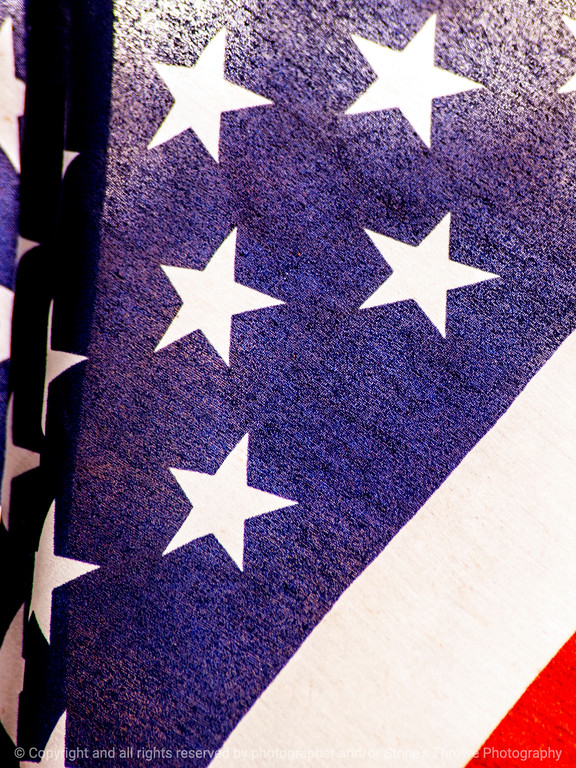 015-flag-wdsm-29oct14-09x12-001-0432