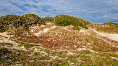 Nana Dune Amelia Island Copyright 2020 Steve Leimberg UnSeenImages Com _0100-