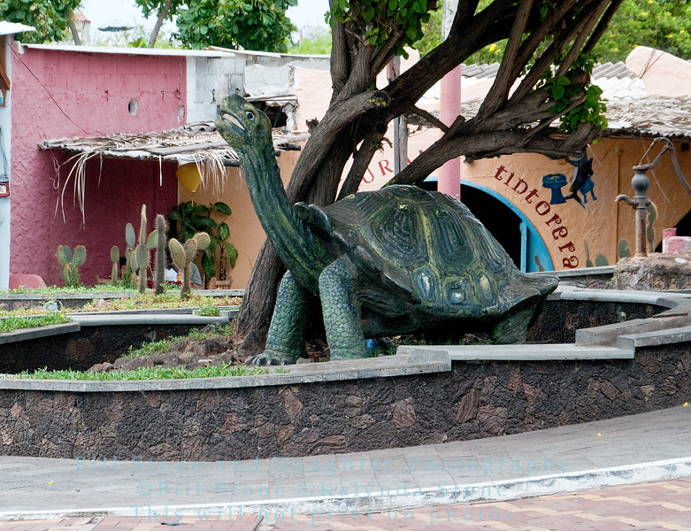 Tortoise sculpture-Puerto Ayora-Galapagos
