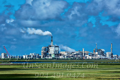 Paper Mill - Amelia Island - Copyright 2017 Steve Leimberg UnSeenImages Com _Z2A0245