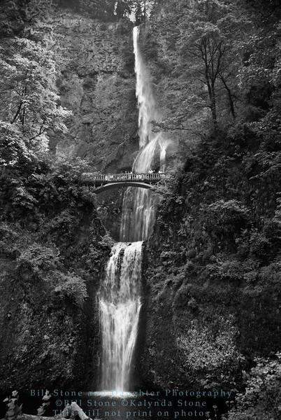 Multnomah Falls, columbia gorge, oregon in black and white