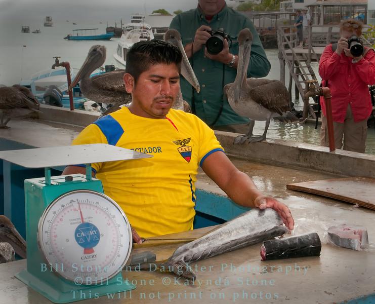 Fish Stall-Puerto Ayora-Galapagos 1