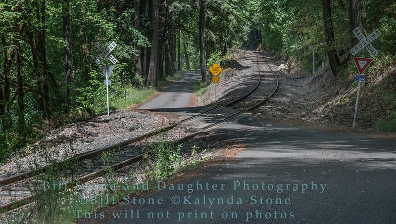 Railroad Crossing near Mapleton, Oregon