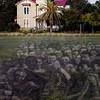 Plaza Fort San Carlos - Slave Ghosts - Copyright 2015 Steve Leimberg - UnSeenImages Com _Z2A2023