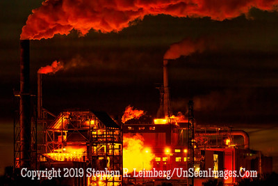 Paper Plant at Night - Copyright Steve Leimberg - UnSeenImages Com _H1R6922