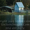 View from Boat Toho Lake Florida - Copyright 2016 Steve Leimberg - UnSeenImages Com _H1R9598