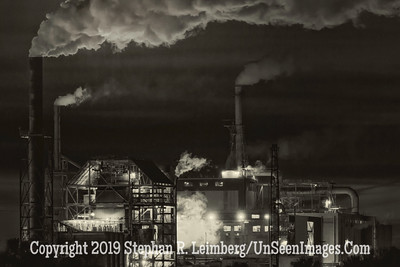 Paper Plant at Night B&W - Copyright Steve Leimberg - UnSeenImages Com _H1R6922