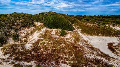 Nana Dune Copyright 2020 Steve Leimberg UnSeenImages Com _0205