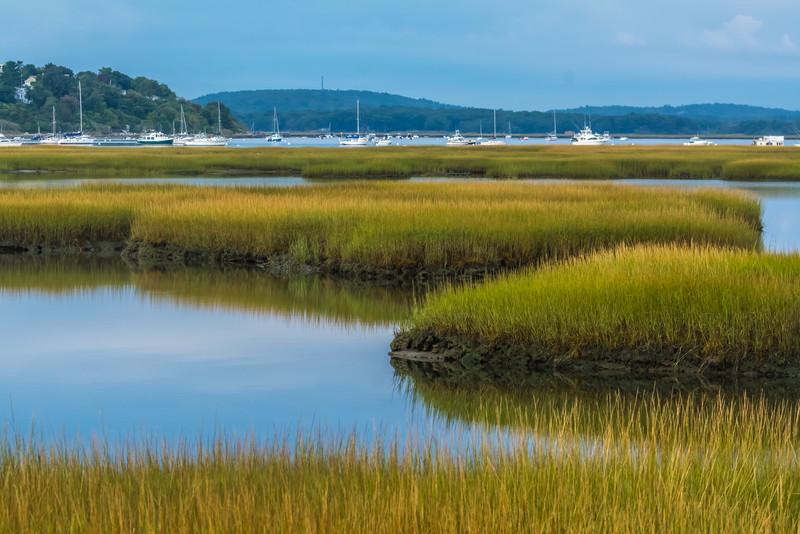 Plum Island Marsh