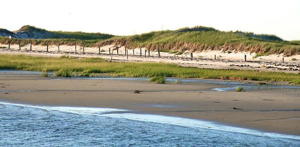 Long Beach Dunes 3