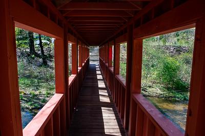 Town Brook Trail-2112-2