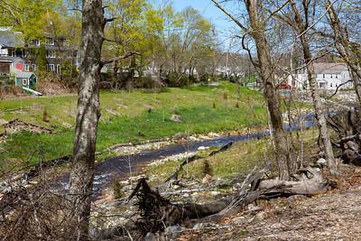 Town Brook Trail-2090