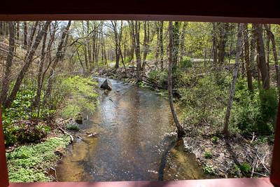 Town Brook Trail-2116