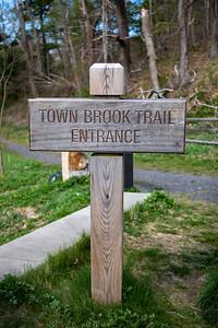 Town Brook Trail-2164